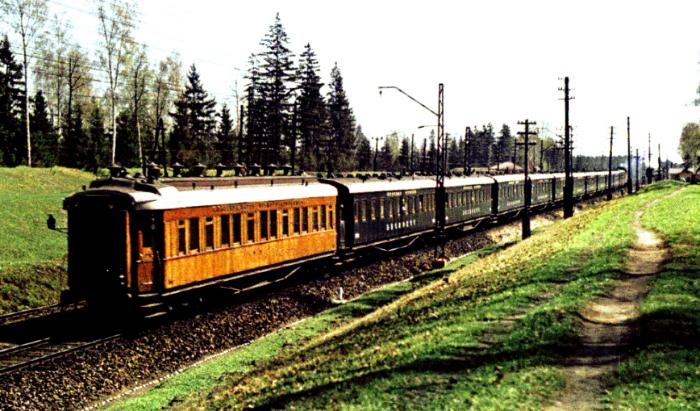 Поезд двигался со скоростью более 100 км/ч, которую практически нигде не сбавлял / Фото: 12mm.ru