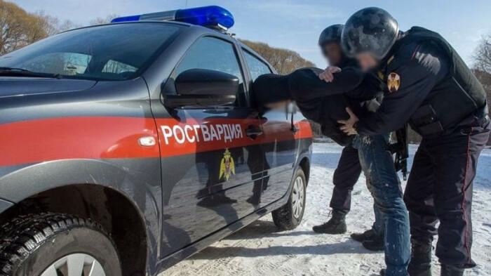Росгвардейцы же могут задержать нарушителя или доставить в полицейский участок / Фото: altapress.ru