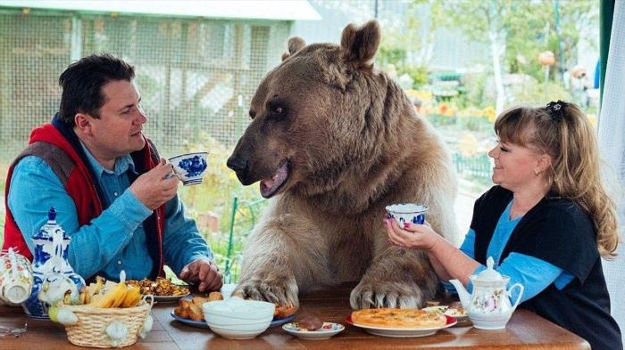 Жителей других стран в России очень многое удивляет и впечатляет / Фото: iohotnik.ru