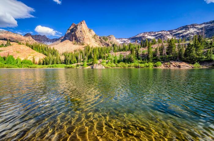 В Соединенных Штатах приняли решение реализовать проект по зарыблению озер в штате Юта / Фото: muz4in.net