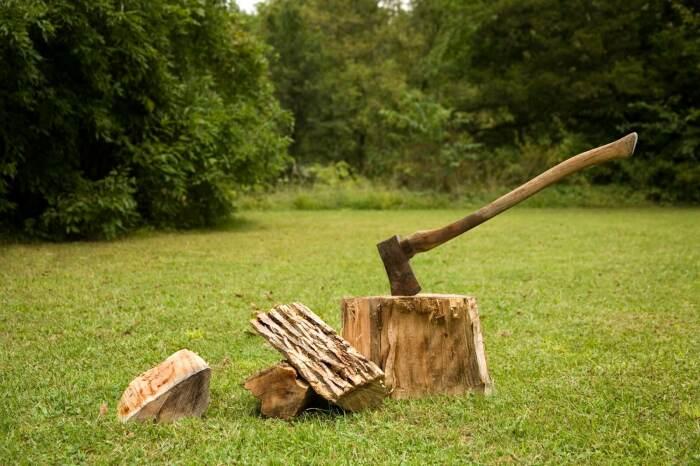 Практически все мужчины с малых лет были хорошо знакомы с топором / Фото: woodsplitterdirect.com