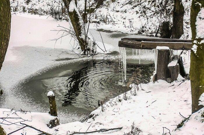 Когда зима бесснежная, а водоемы покрыты льдом, вот тогда для лесных обитателей наступает катастрофа / Фото: pixabay.com