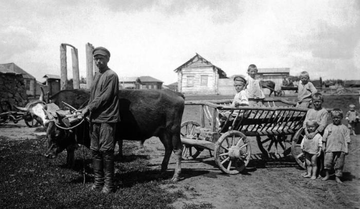 Участь детей в деревнях была предрешена, уехать жить в город они могли только с разрешения председателя колхоза / Фото: yandex.ru