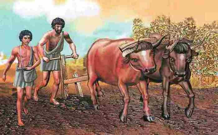 Пожилые спартанцы могли заниматься сельским хозяйством / Фото: travelask.ru