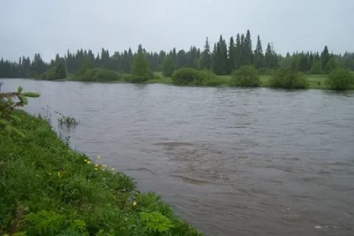 Деревня Растесс появилась недалеко от реки Кырья / Фото: pokazuha.ru