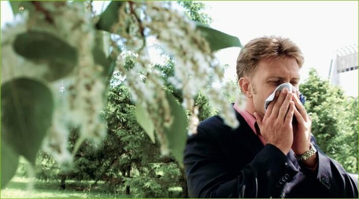 От тополиного пуха страдают аллергики / Фото: virgo.org.ua