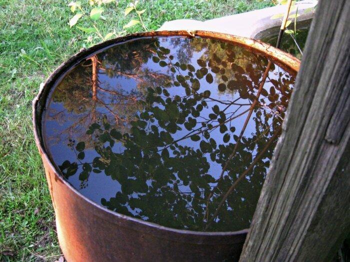 Мыть постоянно бочку от водорослей неудобно и хлопотно / Фото: yandex.ua