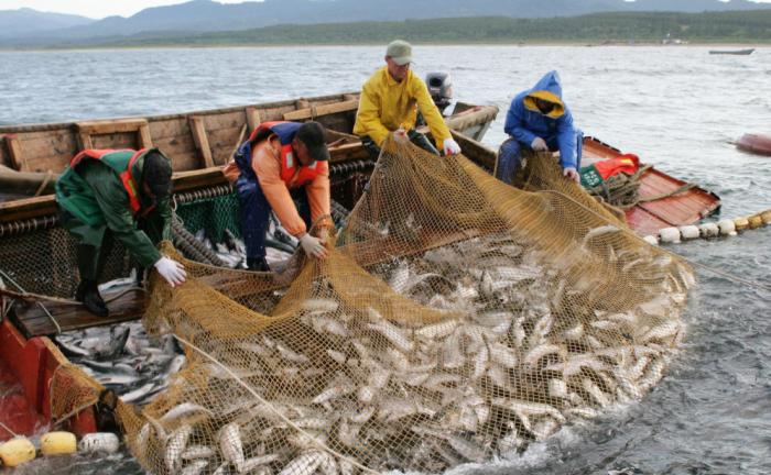 Основной вид заработка в поселке - ловля рыбы / Фото: fishnews.ru