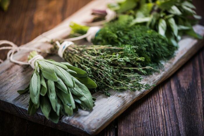 Иностранцы употребляют базилик, розмарин, шалфей и другие пряности, однако укроп не воспринимают, считая его вкус резким / Фото: ivetta.ua