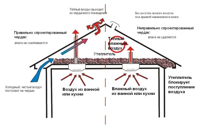 Избежать неприятной ситуации поможет вентиляция чердака / Фото: orchardo.ru