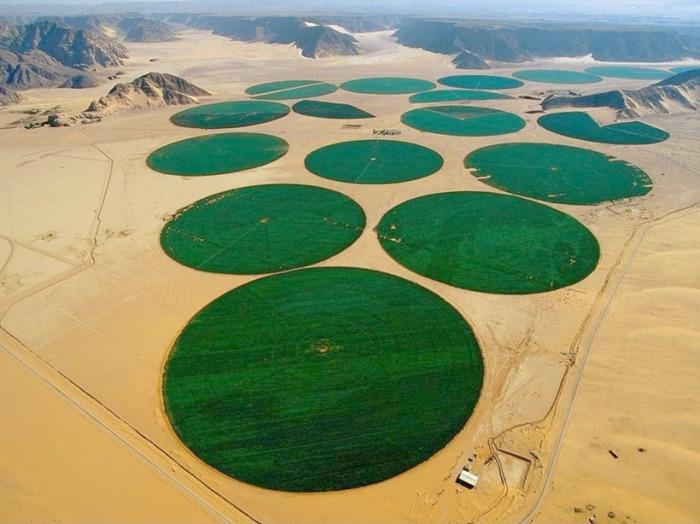 Спустя какое-то время в пустыне появились поля, стало развиваться земледелие / Фото: travelask.ru