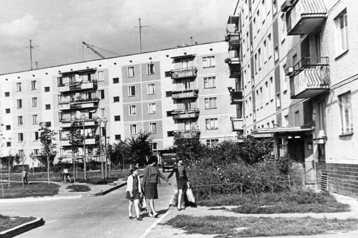 Еще в начале XX века были проведены ряд исследований, доказавших, что постройка домов возможна до отметки, которая не превышает высоту деревьев / Фото: aif.ru