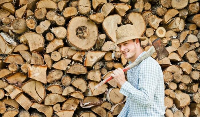 Знание нескольких правил позволит переработать большой объем древесины и получить дрова, которые не дымятся и хорошо греют / Фото: ua.depositphotos.com