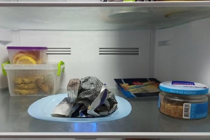 Мокрую газету желательно класть в холодильник на тарелке или блюде, чтобы она не примерзла / Фото: jensov.com