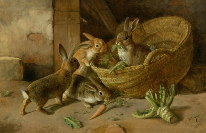 Несмотря на отмену запрета, старообрядцы не едят крольчатину / Фото: shoppingator.ru