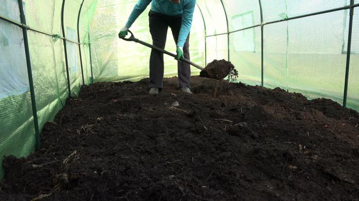 Решить проблему можно несколькими способами, один из них - перекапывание земли / Фото: mamadysh-rt.ru
