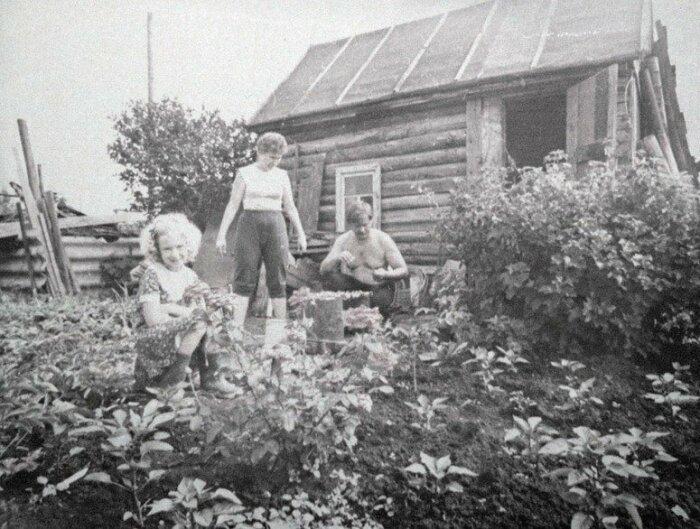 У советских семей появилась новая забота - обработка земли / Фото: m.fotostrana.ru