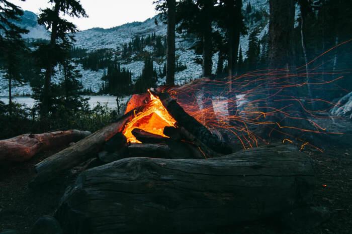 В тех лесах, куда часто приезжают туристы, у зверей практически исчезла боязнь огня / Фото: beaumo3.livejournal.com