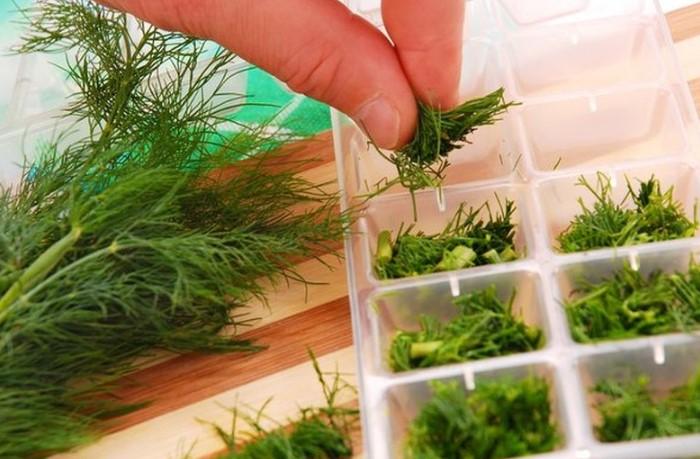 Чтобы зимой наслаждаться свежей зеленью, сделайте летом заготовки