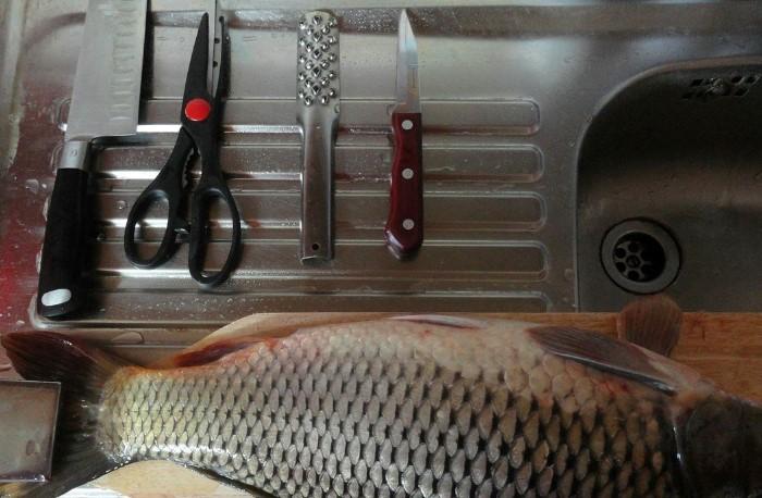 Для чистки понадобится нож или рыбочистка, разделочная доска, кулинарные ножницы, пищевая пленка / Фото: legkovmeste.ru