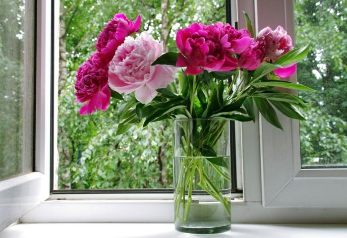 С сахаром и водкой цветы простоят дольше / Фото: cdn.photosight.ru