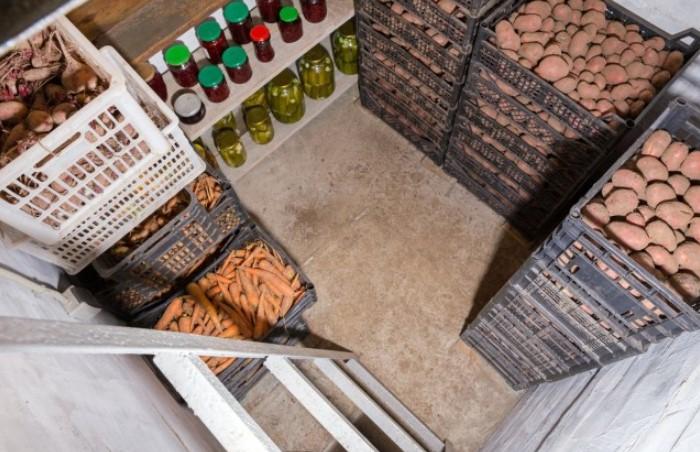 Одни продукты предпочитают нулевую температуру, другие же требуют условий потеплее / Фото: valest.com.ua