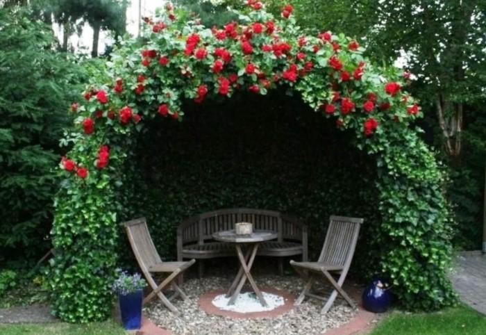Розы бывают белыми, алыми, розовыми, желтыми, с полумахровыми или обычными лепестками / Фото: dizainexpert.ru
