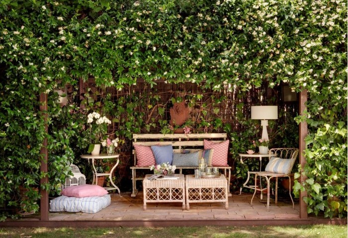 Летом ароматные лианы порадуют красивым желтым или розовым цветением / Фото: besedkis.ru
