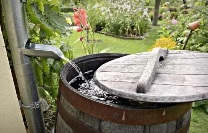 Если емкость закрыта, из нее постоянно черпают воду, создавая движение, у комаров нет ни единого шанса / Фото: 881709.smushcdn.com