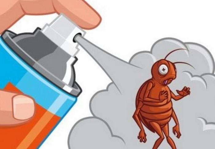 Бороться с муравьями нужно начинать сразу же / Фото: rostovmama.ru