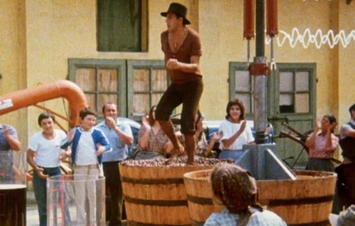 Наденьте резиновые сапоги, станьте в раствор и почувствуйте себя Челентано из «Укрощения строптивого» во время давки винограда / Фото: pbs.twimg.com