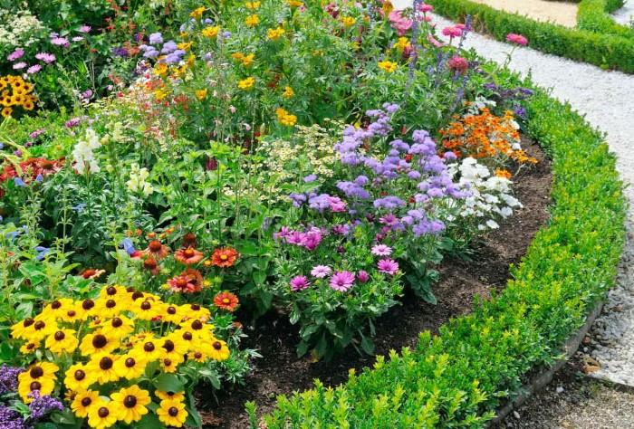Разбейте на участке несколько клумб, сделайте цветник перед домом и посадите любимые растения / Фото: takprosto.cc