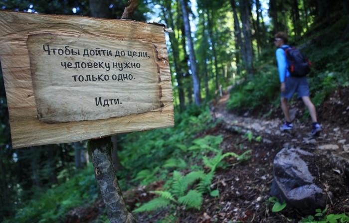 Экотропы оборудованы указателями, по ним четко проложены маршруты, чтобы люди не заблудились / Фото: tvil.ru