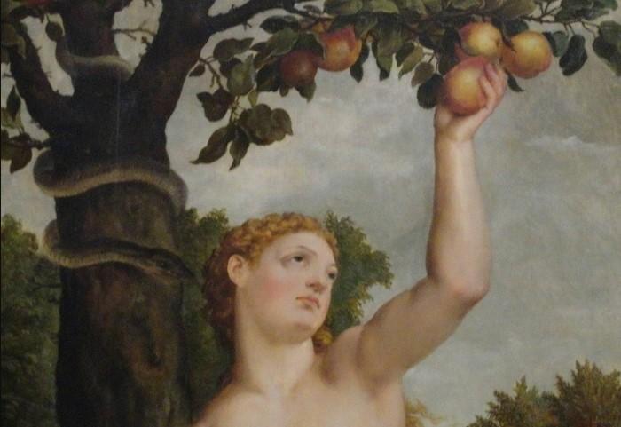В Библии не говорится, какой именно фрукт рос на древе познания добра и зла / Фото: fito-center.ru