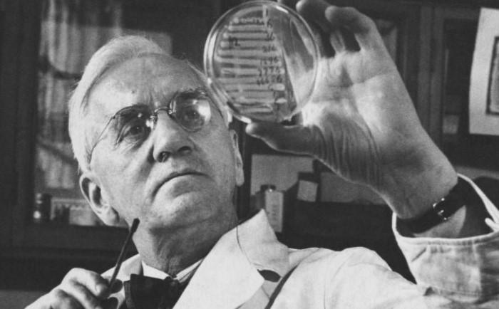 Незапланированный опыт помог Флемингу открыть пенициллин и спасти миллионы людей от бактериальных инфекций / Фото: cdn.idntimes.com