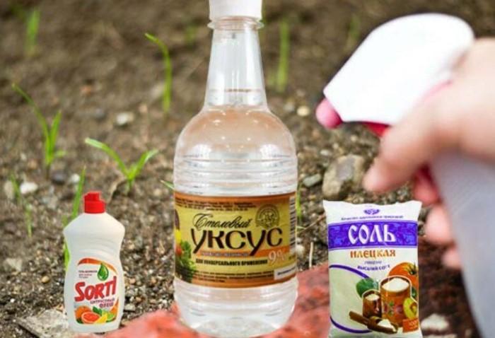 Чтобы приготовить гербицидное мыло, смешайте жидкое мыло (посудный гель), уксус и соль / Фото: golosros.ru
