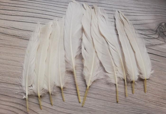 Гусиные перья использовались вместо зубочисток / Фото: witchleather.ru