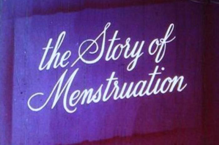 Мультфильм The Story Of Menstruation повествует о женском здоровье и цикле  / Фото: nataliachillon.files.wordpress.com