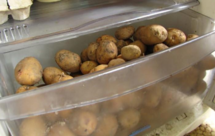 В холодильнике лук, чеснок и картофель сгнивают или начинают прорастать / Фото: vkurselife.com