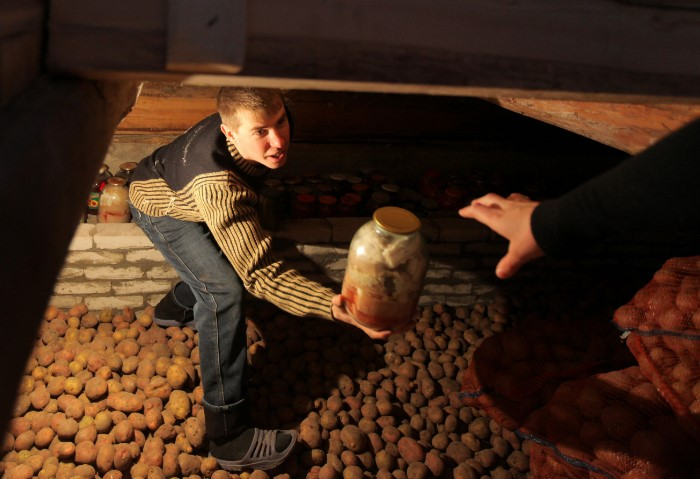 Регулярно перебирайте картофель и выбрасывайте порченный / Фото: cdn1.img.sputnik-georgia.com