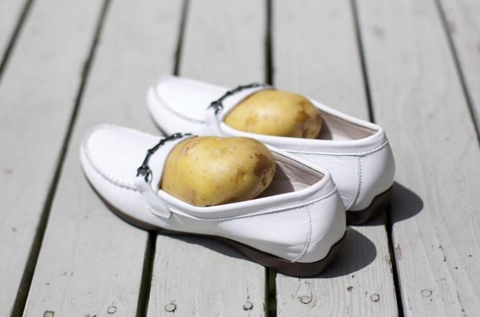 Попробуйте трюк с картофелем и вы удивитесь результату / Фото: pbs.twimg.com