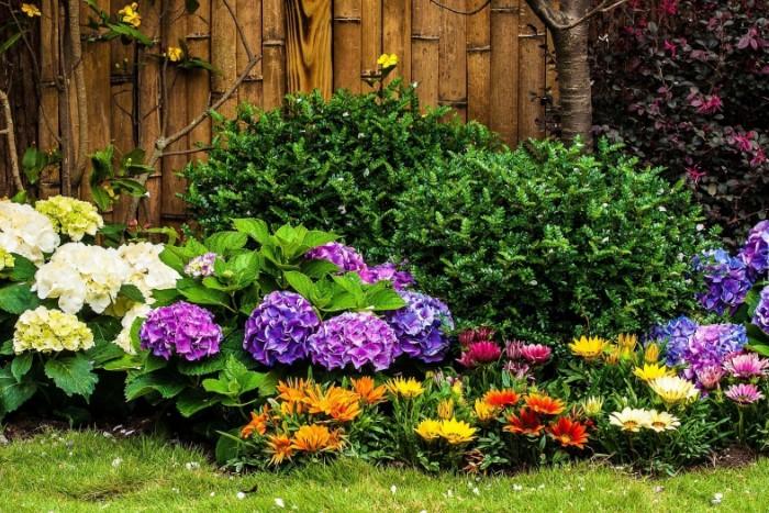Растения пониже располагайте на переднем плане / Фото: tapeciarnia.pl