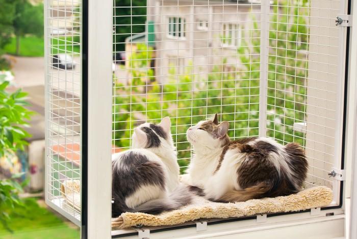 Есть разновидности с кошачьим балкончиком, чтобы животные могли проводить время на свежем воздухе / Фото: cs1.livemaster.ru