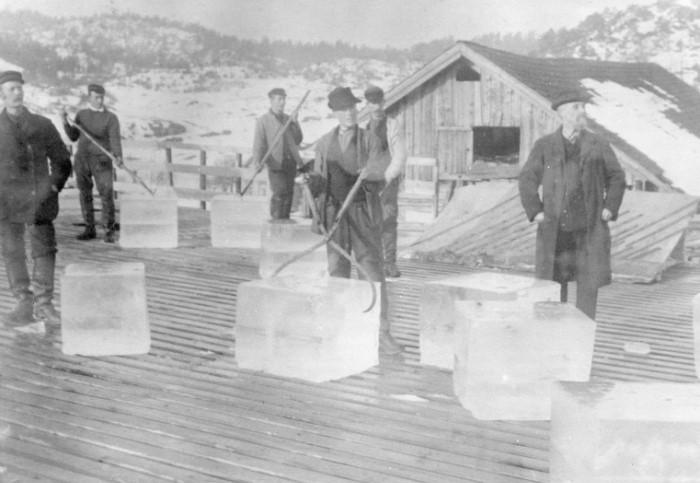 В Америке «ледяные короли» сколотили на промысле миллионы / Фото: 1.bp.blogspot.com