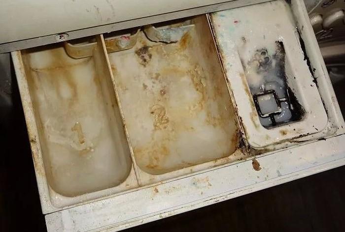 Не доводите лоток до плачевного состояния / Фото: 100uslug.com