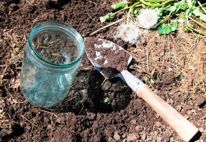 В стеклянную емкость 0,5 л положите порезанный картофель с морковью / Фото: stroymanual.com