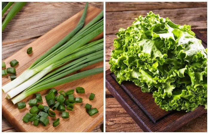 Зеленый лук и листья салата испортятся и утратят все полезные свойства