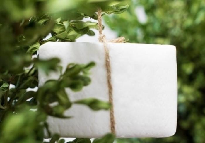 Подвесьте мыло на деревья, чтобы отпугнуть назойливых насекомых / Фото: furnishhome.ru