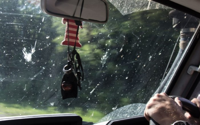 Во время скоростного движения по трассе мошки так и норовят удариться о стекло
