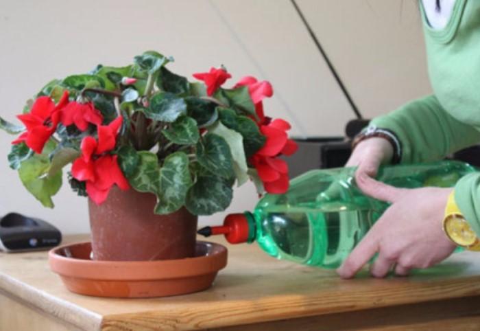 Оставлять жидкость в поддоне можно буквально минут на 15-20 / Фото: 7lestnic.com